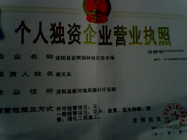 江苏省沭阳县新河镇金辉苗木场